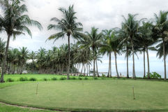 Med клуба, Bintan, Индонезия Стоковая Фотография