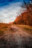Med alla färger av hösten fotografering för bildbyråer