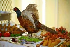 Med Artistically den välfyllda maträtten för jaktfågelfasanen dekoreras en läckerhet från kocken - en maträtt av rådjurskött arkivbild