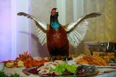 Med Artistically den välfyllda maträtten för jaktfågelfasanen dekoreras en läckerhet från kocken - en maträtt av rådjurskött royaltyfri foto