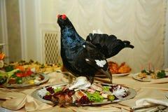 Med Artistically den välfyllda maträtten för jaktfågeltjädern dekoreras en läckerhet från kocken - en maträtt av rådjurskött royaltyfri bild