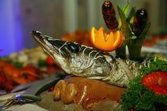 Med Artistically sterleten för den Gefilte fisken som helt bakas, dekoreras en läckerhet från kocken - en maträtt av rådjurskött royaltyfri fotografi