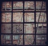 Med ett gallerfönster Royaltyfria Foton