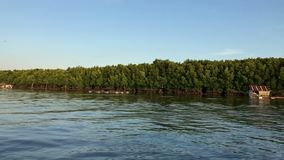 Med fartyget på floden i Thailand till och med djungeln lager videofilmer