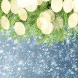 Med granträdet och snö Arkivfoton