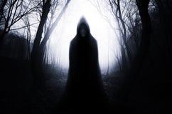 Med huva spöke i spökad skog med dimma på allhelgonaaftonnatt royaltyfria foton