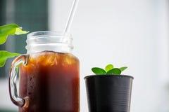Med is kaffe nära litet träd med suddig bakgrund royaltyfria bilder