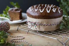 Med is pepparkakaBundt kaka med julferiedekoren Fotografering för Bildbyråer