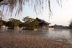 Med is sjö i den Gyeongbokgung slotten, Seoul, Sydkorea fotografering för bildbyråer