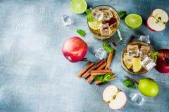 Med is te för kryddigt äpple royaltyfria bilder