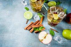 Med is te för kryddigt äpple fotografering för bildbyråer