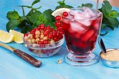 Med is te med vinbär, mintkaramellen och citronen Arkivfoton