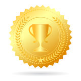 Medaglia d'oro del campione Immagine Stock