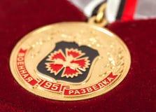 Medaglia di servizio russa fotografia stock libera da diritti