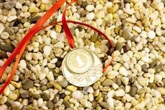 Medaglia dorata sul ciottolo Immagini Stock Libere da Diritti