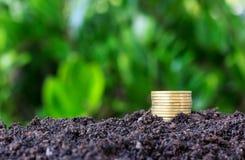 Medaillenfliesen-Volumenzunahme auf Boden Lizenzfreies Stockfoto