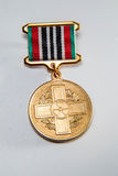 Medal dla 25th rocznicy Chernobyl katastrofa Fotografia Royalty Free