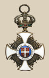 medal stary Obraz Royalty Free