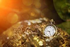 Medalhão do relógio Fotos de Stock