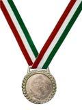 Medalhão verde & vermelho da fita Fotografia de Stock Royalty Free