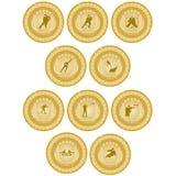 Medalha de ouro sport-6 Fotografia de Stock Royalty Free