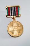 Medalha para o 25o aniversário do desastre de Chernobyl Fotografia de Stock Royalty Free