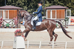 Medalist Marina Aframeeva horse named Vosk Stock Images