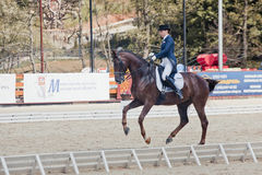 Medalist Marina Aframeeva horse named Vosk Stock Photo