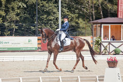 Medalist Marina Aframeeva horse named Vosk Royalty Free Stock Photography