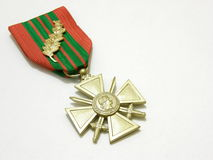 medalj Royaltyfri Fotografi