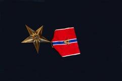 medaljmilitär Arkivfoto