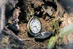 Medallón del reloj Imagenes de archivo