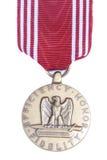 Medalla de la fidelidad del honor Imagen de archivo libre de regalías