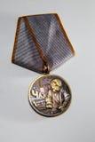 Medalla para el aniversario 30 del accidente de Chernóbil Fotos de archivo