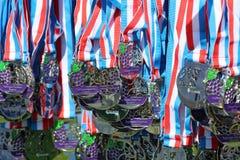 Medallas de la acabadora Fotos de archivo libres de regalías