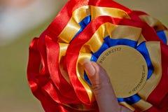 Medallas del perro Foto de archivo libre de regalías