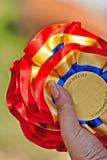 Medallas del perro Fotografía de archivo