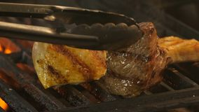 Medallion with beef and two pieces of chicken fillet or turkey on the grill brought to the ready in the background a. Flame of coals and smoke, in the stock footage