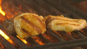 Medallion with beef and two pieces of chicken fillet or turkey on the grill, in the foreground macrosolves of two pieces. Of poultry meat with a grill grill stock video