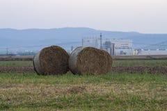 Medas de feno organizadas no grupo no prado com parte traseira da cidade e do céu foto de stock