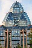 Medborgare Art Gallery av Kanada Arkivbilder