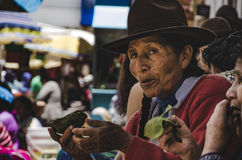 Medborgare av Pisaq Royaltyfri Bild