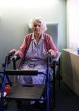 medborgarepensionär royaltyfri fotografi