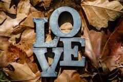 Meddelande av förälskelse med metallbokstäver Fotografering för Bildbyråer
