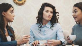 Mededeling van drie jonge meisjes in een koffie Zit op ernstige onderwerpen Heb een betekenis van humeur en snak zwart haar stock videobeelden