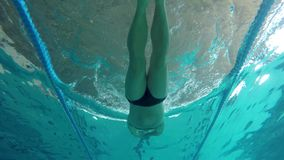 Medelålders caucasian mansimning i vattnet, i simbassängen i Palamos i Spanien stock video