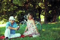 Medelåldriga par som har picknicken med wine Royaltyfri Fotografi