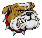 medel för bulldoggillustrationmaskot