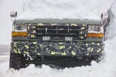 Medel som fångas under snön kall tidvinter Arkivbilder