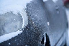 Medel som täckas i is under att frysa regn Arkivfoto